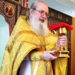 Прощеное воскресение во Владимирском монастыре