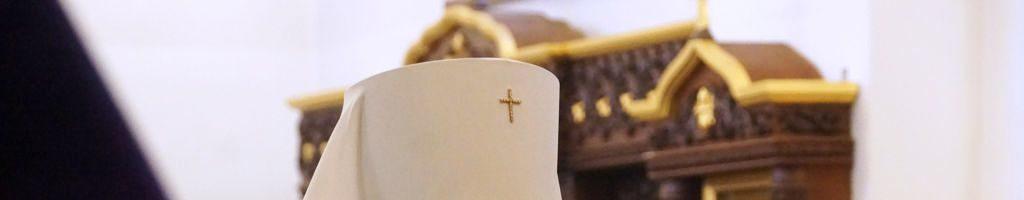 Архиерейская служба в Алексеевском Свято-Иоанновском монастыре